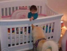 baby wooden bed with mattress