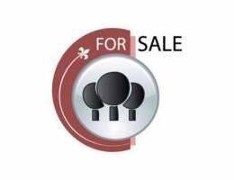 Land For Sale In Jouret El Ballout