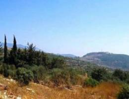 Panoramic view of land in Anan Hills, Anan...