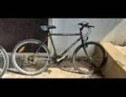 Bike orion