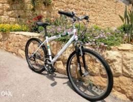 Coleman Mountain Bike